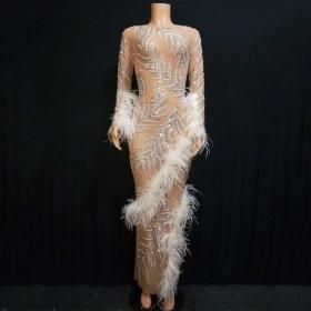 Mesh Rhinestones Feather Dress